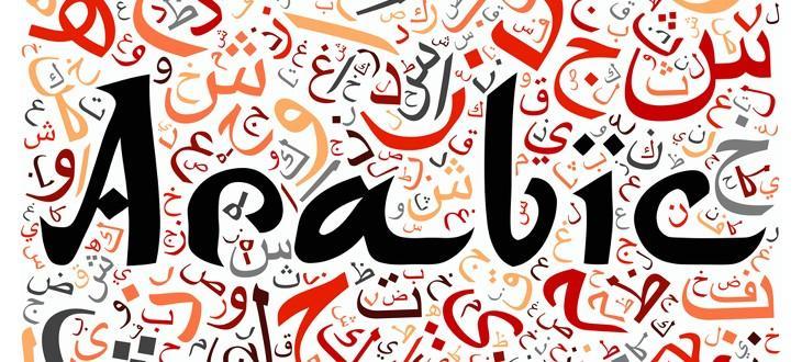 منهج اللغة العربية